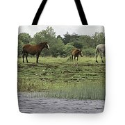Horses On Ireland's River Shannon Tote Bag