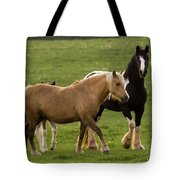 Horses Photography Tote Bag