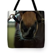 Horse Whiskers Tote Bag