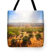 Horseshoe Bend Desert Tote Bag