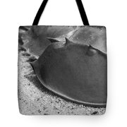 Horseshoe Crab Tote Bag