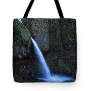 Horsetail Falls 1 Tote Bag