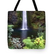 Horsetail Falls Basin Tote Bag