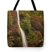 Horsetail Falls Tote Bag