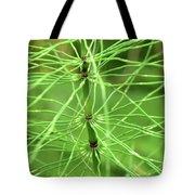 Horsetail Reed 2 Tote Bag