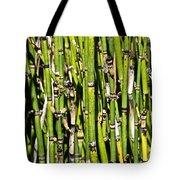 Horsetails #2 Tote Bag
