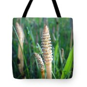 Horsetails And Dew Drops Tote Bag