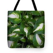 Hosta Tote Bag