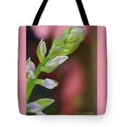 Hosta Blooming Tote Bag