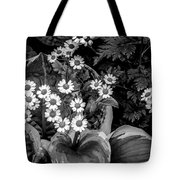 Hosta Daisies Tote Bag