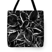 Hosta In Black And White Tote Bag