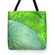 Hosta Lavista Baby Tote Bag