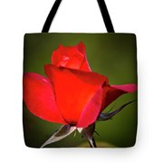 Hot Cocoa Rose Tote Bag