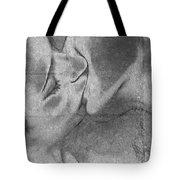 Hot Love Cold War Tote Bag