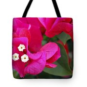 Hot Pink Bougainvillea Tote Bag