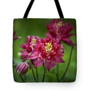 Hot Pink Columbine Tote Bag
