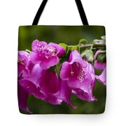 Hot Pink Foxglove Tote Bag
