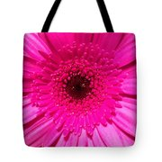 Hot Pink Gerbera Tote Bag