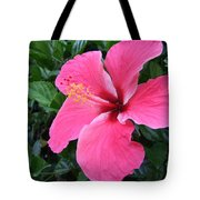 Hot Pink Hibiscus 1 Tote Bag