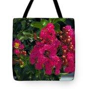 Hot Pink Jacaranda Tote Bag
