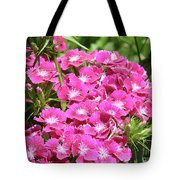 Hot Pink Sweet William Flowers In A Garden Blooming Tote Bag