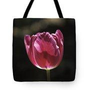 Hot Pink Tulip Squared 02 Tote Bag