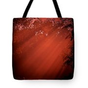 Hot Rays Of Sun Tote Bag