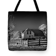 House And Cottonwoods Tote Bag