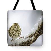 House Finch Snow Is Coming Tote Bag by LeeAnn McLaneGoetz McLaneGoetzStudioLLCcom
