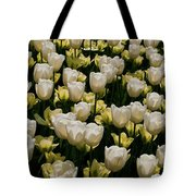 House Of White Tote Bag