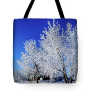 House On The Outskirts 1 Tote Bag