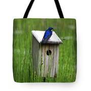 House Sitting Tote Bag