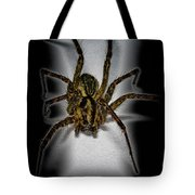 House Spider Tote Bag