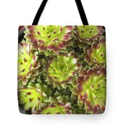Houseleek Tote Bag