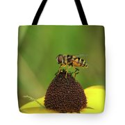 Hoverfly On Brown Eyed Susan Tote Bag