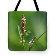 Hoverfly On Flower Tote Bag