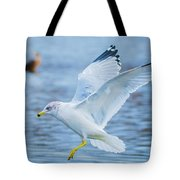 Hovering Seagull Tote Bag