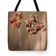 How Bees Keep Warm  Tote Bag
