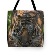How Quickly Can You Run? Tote Bag