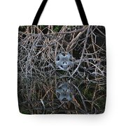 Hub In Reflection Tote Bag