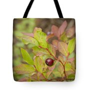 Huckleberry Tote Bag by Idaho Scenic Images Linda Lantzy