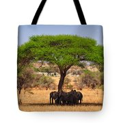 Huddled In Shade Tote Bag