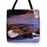 Huddling On A Winter Day  Tote Bag