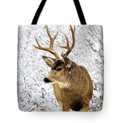 Huge Buck Deer In The Snowy Woods Tote Bag