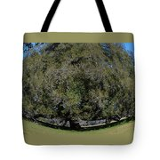 Huge Live Oak Fisheye Tote Bag