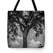Huge Tree 12 Tote Bag