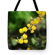 Huisache Close-up Tote Bag