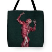 Human Anatomy 16 Tote Bag