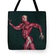 Human Anatomy 29 Tote Bag