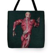 Human Anatomy 31 Tote Bag